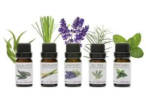 RIO Essential Oil Collection 5 pcs
